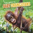 All About Baby Orangutans