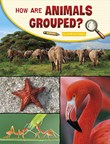 How Are Animals Grouped?