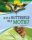 Is It a Butterfly or a Moth?