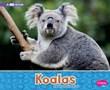 Koalas: A 4D Book