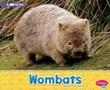Wombats: A 4D Book