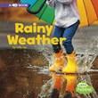 Rainy Weather: A 4D Book