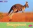 Kangaroos: A 4D Book
