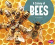 A Colony of Bees