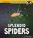 Splendid Spiders