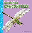 Fast Facts About Dragonflies