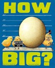 How Big?: Wacky Ways to Compare Size