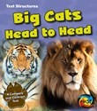 Big Cats Head to Head: A Compare and Contrast Text