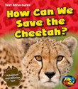 How Can We Save the Cheetah?: A Problem and Solution Text