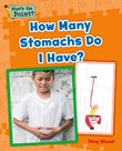 How Many Stomachs Do I Have?