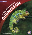 A Day in the Life of a Chameleon: A 4D Book
