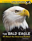 The Bald Eagle: All About the American Symbol
