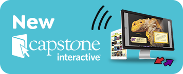 Click here for new Capstone Interactive products.