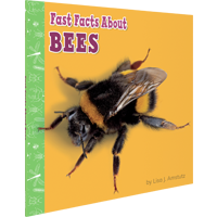 Image of the book 'Fast Facts About Bees' by Lisa J. Amstutz.