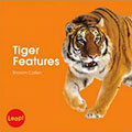 tiger features