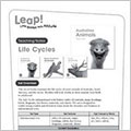 life cycles teaching notes