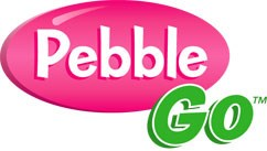 Image result for pebblego image