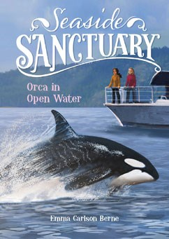 Orca in Open Water