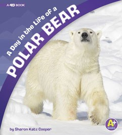 A Day in the Life of a Polar Bear: A 4D Book