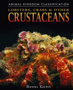 Lobsters, Crabs, and Other Crustaceans