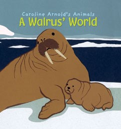 A Walrus' World