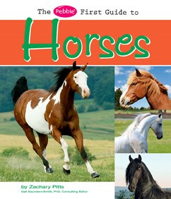 The Pebble First Guide to Horses