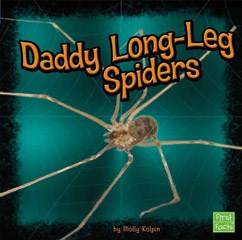Daddy Long-Leg Spiders