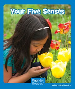 Your Five Senses