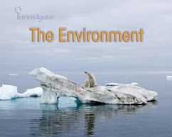 The Environment