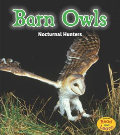Barn Owls: Nocturnal Hunters