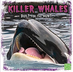 Killer Whales: Built for the Hunt
