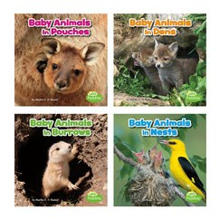 Baby Animals and Their Homes | Capstone Library