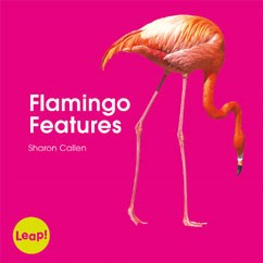 Flamingo Features