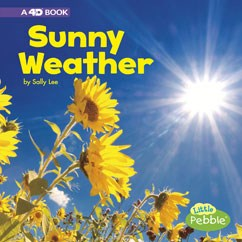 Sunny Weather: A 4D Book