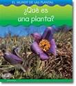 ¿Qué es una planta?