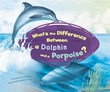 What's the Difference Between a Dolphin and a Porpoise?