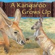 A Kangaroo Grows Up