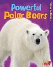 Powerful Polar Bears