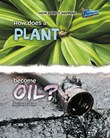 How Does a Plant Become Oil?