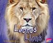 Leones/Lions