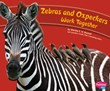 Zebras and Oxpeckers Work Together