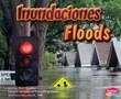 Inundaciones/Floods