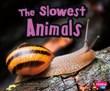 Slowest Animals