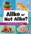 Alike or Not Alike?: A Photo Sorting Game