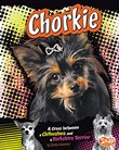 Chorkie: A Cross Between a Chihuahua and a Yorkshire Terrier