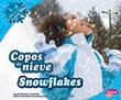 Copos de nieve/Snowflakes