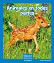 Animales en todas partes