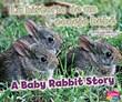 La historia de un conejo bebé/A Baby Rabbit Story