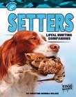 Setters: Loyal Hunting Companions