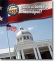 ¿Qué es un consejo municipal?